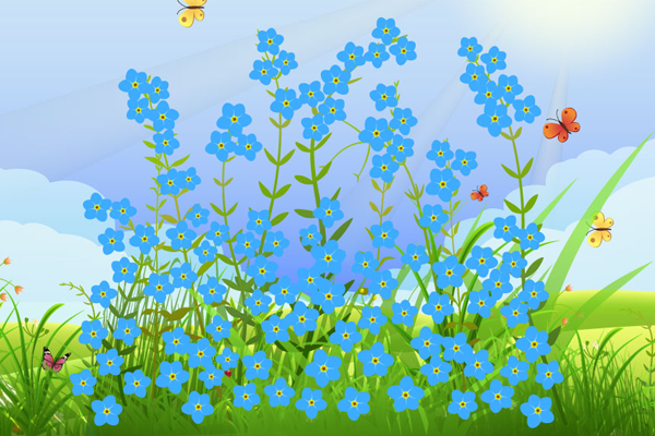 Forget Me Not Field - Virtual Appeal name